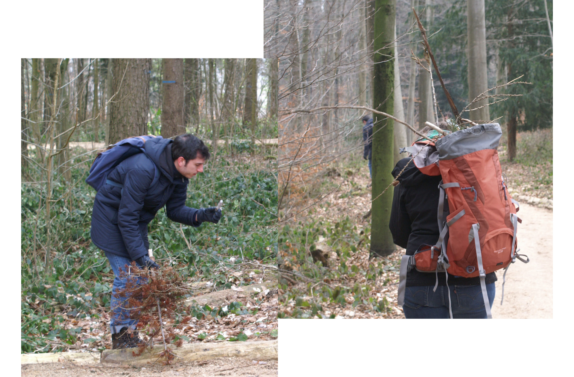 Participants collecting pieces of nature in the forest
